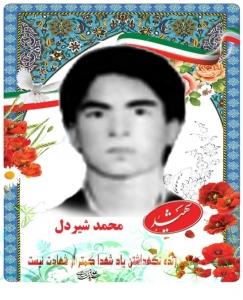 محمد شیردل