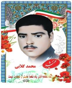 محمد گلابی